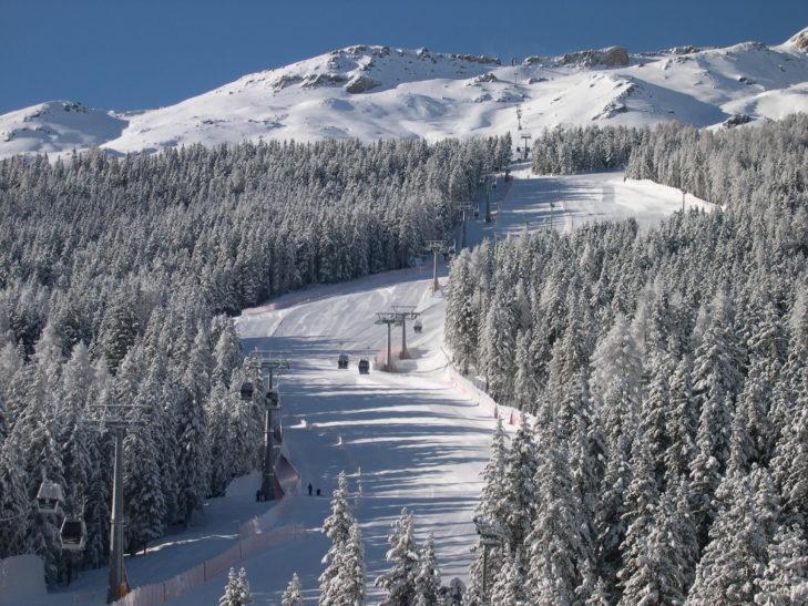 Urokliwy las w ośrodku narciarskim Santa Caterina Valfurva.