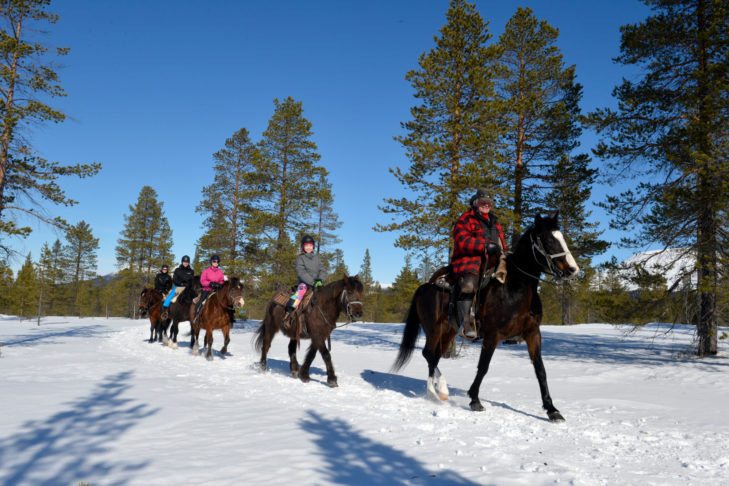 Zimowa przejażdżka w regionie wokół Idre.