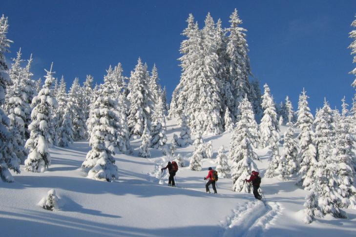 Wędrówki w rakietach śnieżnych i ski touring są tu niezwykle popularne.