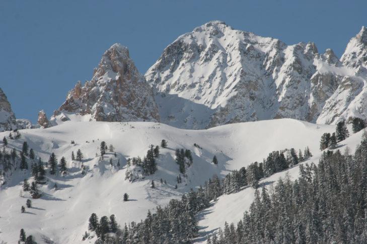 Ośnieżone leśne trasy na terenie narciarskim Valfréjus.