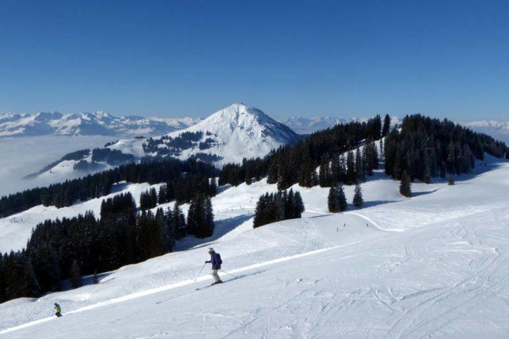 Dzięki trasom w lesie SkiWelt Wilder Kaiser-Brixental jest wyjątkowo malowniczy.