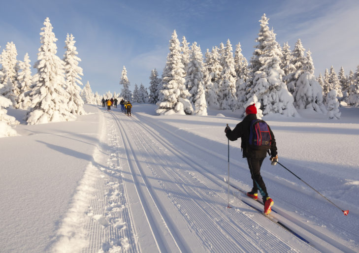 Narciarstwo biegowe wśród ośnieżonych krajobrazów.